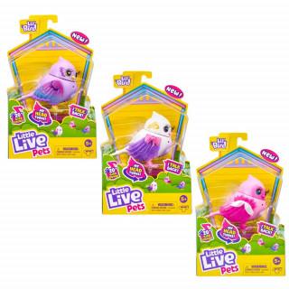Little Live Lil Birds ptičica asortiman